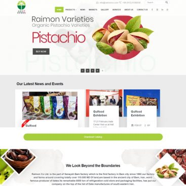 طراحی سایت گروه بازرگانی رایمون